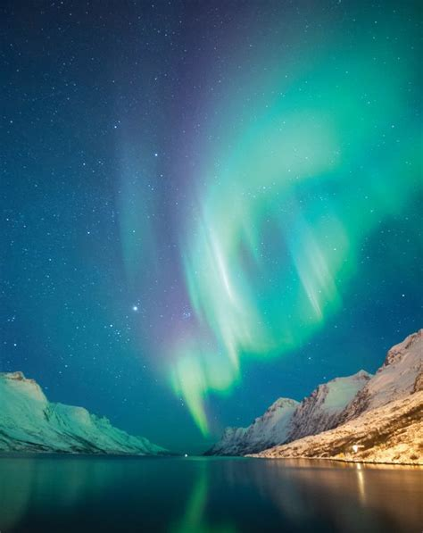 tromso norway northern lights tour northern lights in tromso norway holidays 2018 2019
