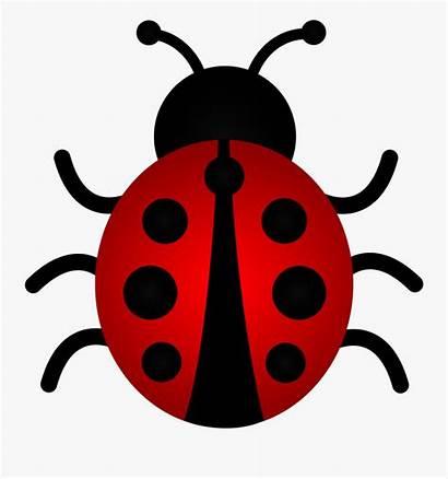 Ladybug Clip Clipart Bug Clipartkey