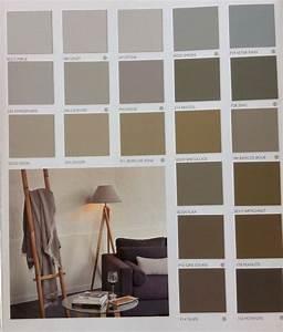 17 images about salon on pinterest grey walls living With nuancier de couleurs peinture