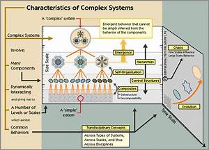 A Model Of Nursing As A Complex Adaptive System
