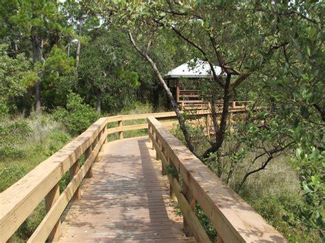 Hammock Park Dunedin by Rediscovering Florida Hammock Park Dunedin Fl Rdf 12