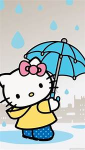 Kitten In Rainy Day Iphone 5 Wallpapers Downloads