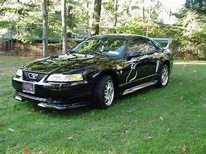 side69show 2000 Ford Mustang Specs, Photos, Modification Info at CarDomain