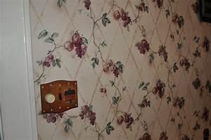 Chomp Wallpaper Remover