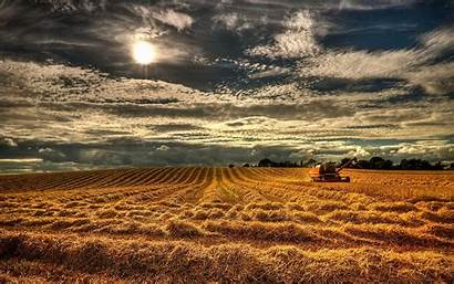 Harvest Wallpapers Stunning Backgrounds Wallpaperaccess Res