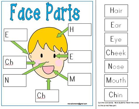 all about me my literacy amp math centers printables 869 | 6af7eddb21182ccc4785971273fbcace