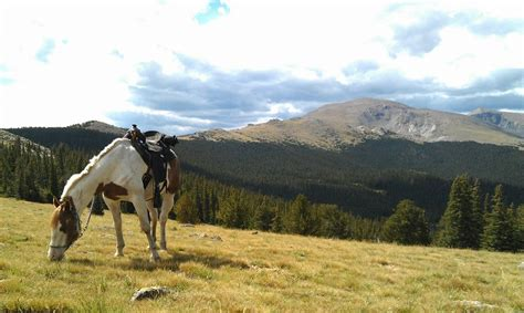 denver horseback near colorado mountain bear stables riding tour waterfalls take onlyinyourstate place