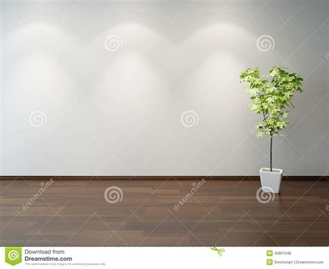 green decorative plant in a white rectangular pot stock