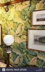 Acanthus stockfotos acanthus bilder alamy for Markise balkon mit william morris tapete