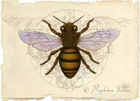roxana illuminated perfume honey bee art
