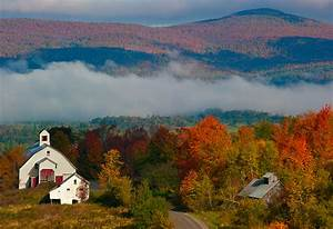 Vermont Foliage Season; A Special Year