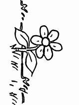 Coloring Pages Flowers Grass Colouring Boyama Sayfaları Flower10 Clipart Clip Sheets Doğa Sanat Arapca Kaligrafi Taslaklar Cicekler Popular Spring Library sketch template