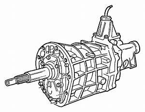 Dodge Dakota Transmission  Two Wheel Drive  5 Speed