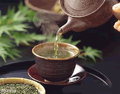 Cholesterol Herbs Lowering Tea Lower Herbal