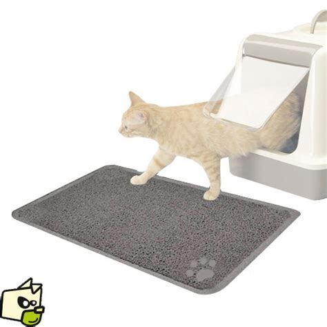 urine chat tapis 28 images odeur d urine tout pratique nettoyer urine chat tapis awesome