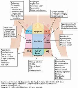 Abdominal And Pelvic Pain In The Nonpregnant Female