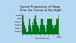 The Sleep  Weight Loss Connection