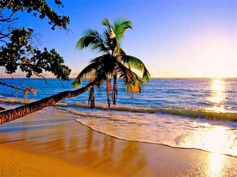 beautiful paradise beach  wallpaperscom