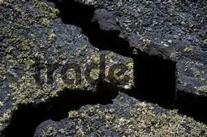 Atlantic Lava Stone : cracks in lava rock lichens lanzarote canary islands atlantic o ~ Markanthonyermac.com Haus und Dekorationen
