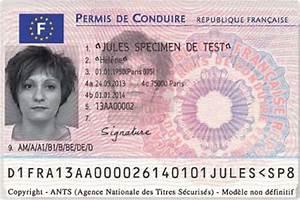 Nombre De Point Permis De Conduire : blog stagespointspermis faux permis de conduire ~ Medecine-chirurgie-esthetiques.com Avis de Voitures