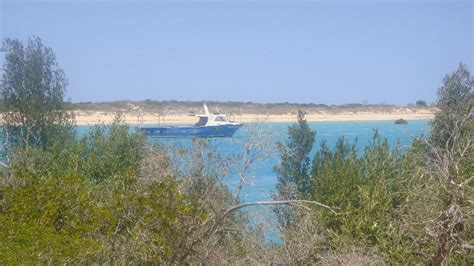 Willie Creek Boat Cruise by Travel Pictures Of Broome In Australia