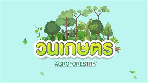 วนเกษตร (Agroforestry) - YouTube