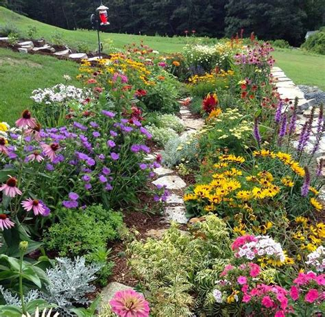 wildflower garden designs 10 best images about of course this is my garden on pinterest terracotta pots backyards and