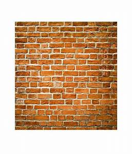 Buy Paw Brown Brick Wall Texture Wallpaper Panel Online at ...