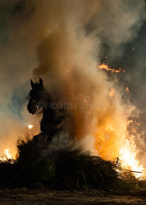 fire jumping horses horse fear above without gallop