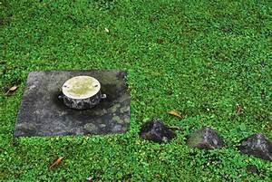 Entwässerung Grundstück Regenwasser : versickerung f r regenwasser auf eigenem grundst ck so geht 39 s ~ Buech-reservation.com Haus und Dekorationen