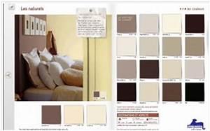 associer couleur chambre et peinture facilement saint With quelle couleur avec du gris clair 2 la couleur saumon les tendances chez les couleurs d