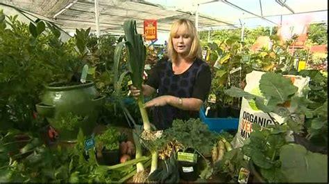 Ee  Best Ee   Winter Vegetable Gardening Youtube