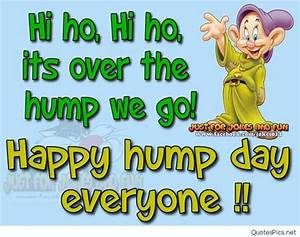 Funny hump day quotes, sayings, pictures 2016 2017