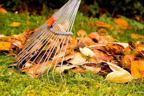 Garten Abräumen Im Herbst by Herbstlaub Fegen Saugen Oder Kompostieren Bauemotion De