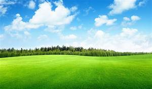 Clouds trees field of grass beautiful nature landscape sky ...