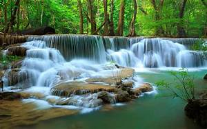 Deep, In, Jungle, Forest, Waterfall, Kanchanaburi, Thailand, Photo, Wallpaper, Hd, Download, For, Mobile, And