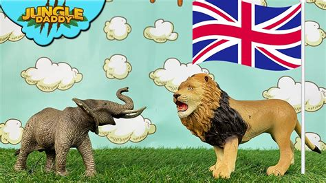 learn animals   countries jungle daddy
