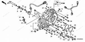 Honda Atv 2008 Oem Parts Diagram For Rear Crankcase Cover