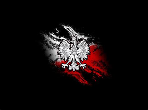 komputer gamer eagle on the background of the flag wallpapers and