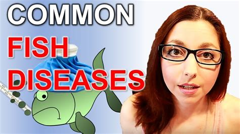 common fish diseases    spot  treat