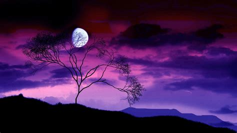 Blue Night And Moon Nature Hd Wallpapers