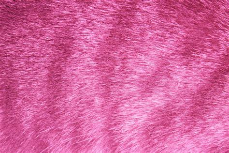 pink fur wallpaper wallpapersafari