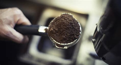 Coffee grounds are good on plants, but too many will compact the soil and make the drainage poor, thus causing water borne fungis and diseasees.just dont use too much.also used coffee grounds provide nitrogen, so do not use too many again, for it will give your roses nice bright glossy leaves but. Are Coffee Grounds Good for Roses? | Reference.com