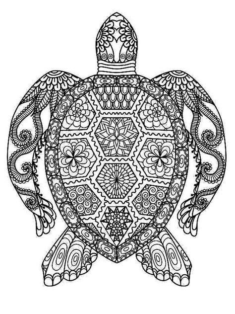 unique mandala turtle ideas  pinterest adult turtle coloring pages mandala