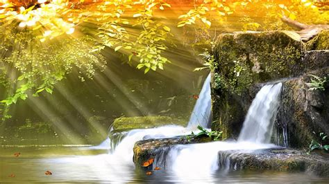 Living Waterfalls Animated Wallpaper - waterfall animated wallpaper