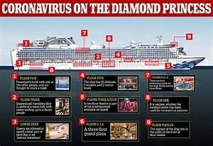 Government Tells  U0026 39 Coronavirus Cruise U0026 39  Passengers They May