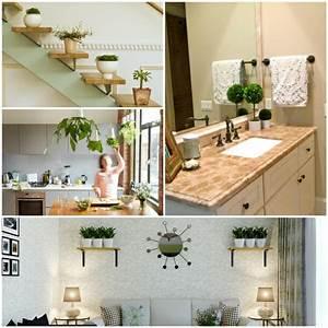 Pflegeleichte Zimmerpflanzen Mit Blüten : gr npflanzen in der kleinen wohnung richtig platzieren ~ Markanthonyermac.com Haus und Dekorationen