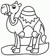 Camel Coloring Pages sketch template