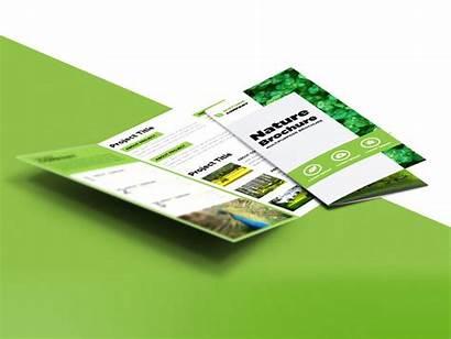 Brochure Fold Tri Nature Template Psd Freebie