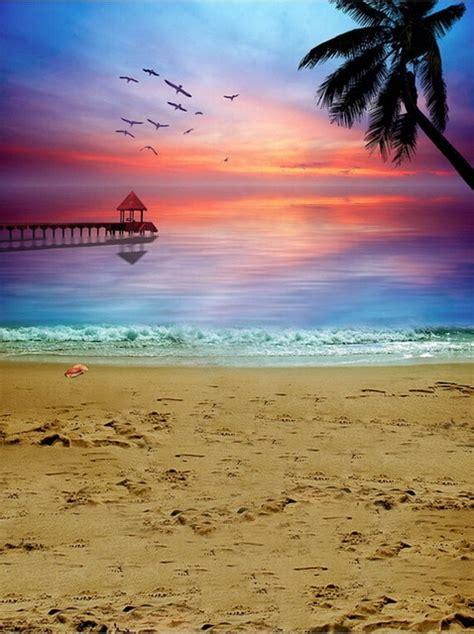 seascape scenery vinyl cloth sunset palm tree sea beach